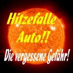 Hitzefalle Auto